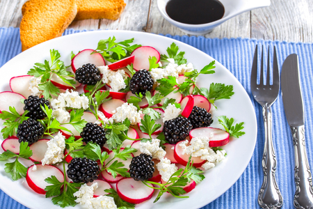 low-calories  parsley, blackberry, radish and  goat cheese organic salad Reklamní fotografie - 56362638