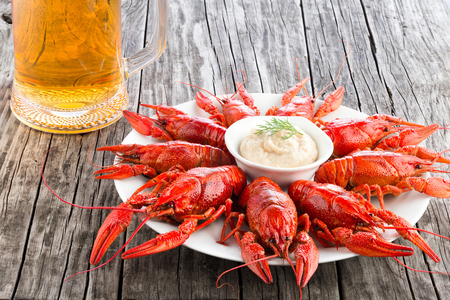 crustacea: Boiled red crayfishes with glass of fresh lager beer