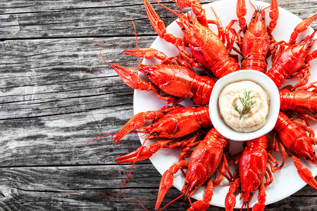 fluvial: Boiled red crayfishes with sauce of grated horseradish, close-up