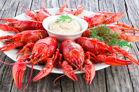 crustacea: Boiled red crayfishes with sauce of grated horseradish, close-up