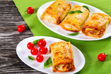 rolled pancakes or crepes stuffed with minced meat and vegetables on oval dishes served with cherry tomatoes and basil, view from above