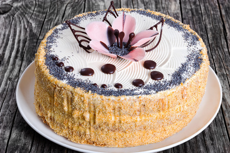 luscious: luscious poppy seeds, walnut and raisins sponge cake layered with cream and  decorated with chocolate drops and icing-sugar beautiful pink flower on white dish, view from above, close-up