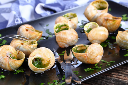 french cuisine - Escargots de Bourgogne or Snails with herbs butter garlic sprinkled with finely chopped parsley on black plate with snail forks, on old wooden table, close-up, macro
