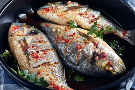 three Raw dorado fish marinated with spices, sea salt, ginger, soy sauce and herbs in a baking dish on a concrete table, close-up