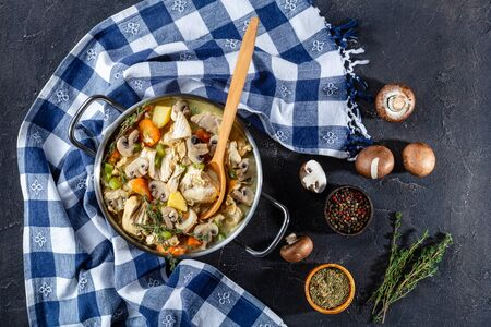 slow cooked chicken breasts stew with vegetables, mushrooms, herbs and creamy sauce in a pot with wooden spoon on a concrete table with ingredients, horizontal view from above, flat lay Zdjęcie Seryjne