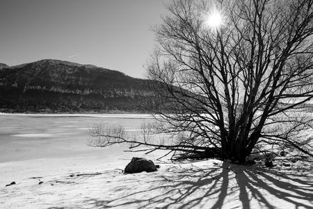 Verschneite Winterlandschaft mit Wald und Sonnenlicht Standard-Bild - 91309204
