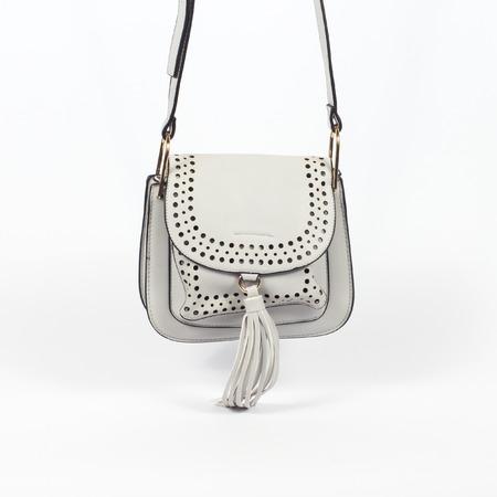 Female bag isolated over white