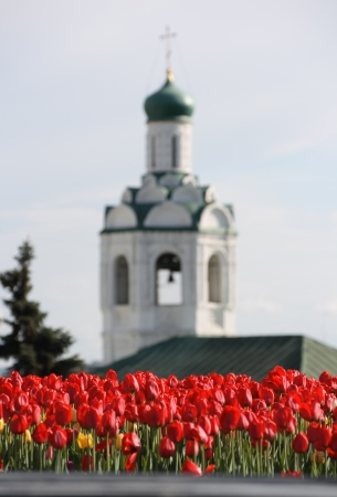 Tulips in the garden with a church in the background Banque d'images