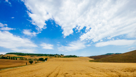 Fields and hills in the coutnryside of Tuscany, Italy Stock Photo