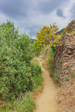 Hiking trail on the hills near the village of Manarola, Cinque Terre, Italy