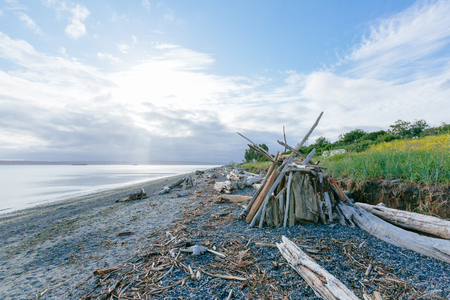 View of driftwood and wood shelter on beach by the sea in Discover Park of Seattle, USA 版權商用圖片