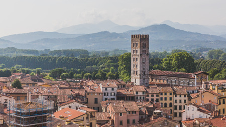 View of tower and Basilica of San Frediano over houses of Lucca, Tuscany, Italy,  viewed  from Guinigi Tower Standard-Bild - 122389569