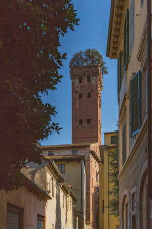 Guinigi tower between houses against blue sky, in Lucca, Tuscany, Italy Standard-Bild - 122389594