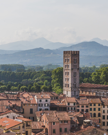 View of tower and Basilica of San Frediano over houses of Lucca, Tuscany, Italy,  viewed  from Guinigi Tower Standard-Bild - 122390252