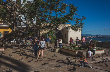 San Juan, Puerto Rico, USA - Jan. 2, 2018: people feeding pidgeons in a sunny afternoon at Parque de las Palomas (park of the pidgeons) in Old San Juan Standard-Bild - 122739112