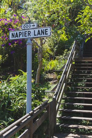 Street sign of Napier Lane along Filbert Street Stairs by Telegraph Hills in San Francisco, USA Standard-Bild - 123158963