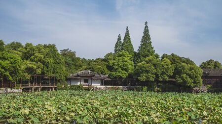 Traditional Chinese houses by lake with lotus leaves, in Little Lotus Villa (Xiao Lian Zhuang) in the old town of Nanxun, Zhejiang, China