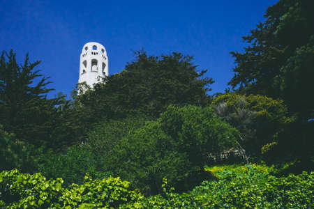 Coit Tower over trees on Telegraph Hill in San Francisco, California, USA