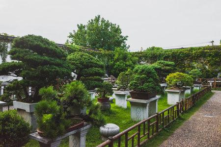 Path by plants at Lingering Garden Scenic Area in Suzhou, Jiangsu, China