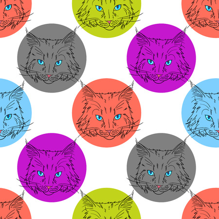 moggy: Maine coon cat portrait. Hand drawn vector illustration. Pet seamless pattern background