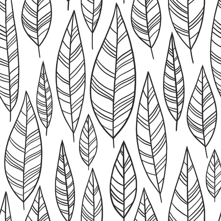 Hand-drawn ornamental feather lineart collection. Vector black and white nature leaves chic boho tribal illustration set.