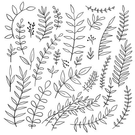 Vintage vector decorative nature brances for laurels and frames. Black and white floral elements for wedding invitations and greeting cards.