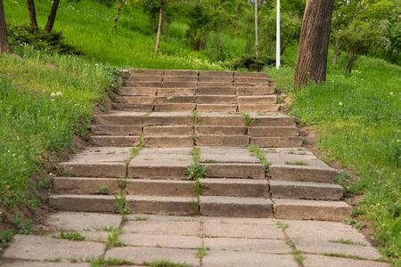 Long outdoor stone steps in a park leading up hill photo
