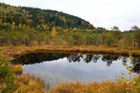 sump: Palude al Lago di Santa Anna dalla Romania
