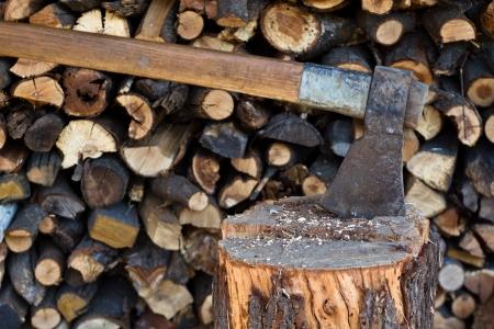 Ņhatchet: Hatchet in log