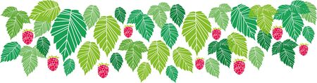 border of green leaves and red raspberries