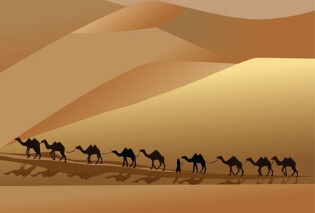 way to go: camel caravan going through the desert with a man