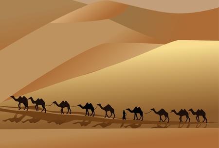 camel caravan going through the desert with a man