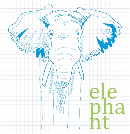 A sketch from the hand of the elephant in the exercise book in the box Illustration
