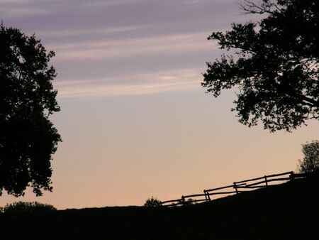 silhoutted: An empty sky with a silhoutted tree on each side of the picture, taken at dawn. Stock Photo