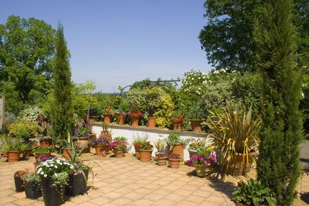 A terraced garden in the sun