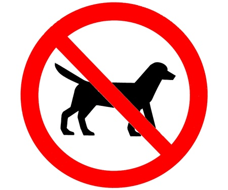 permitted: A red and black no dogs allowed or permitted sign on a white background. Stock Photo