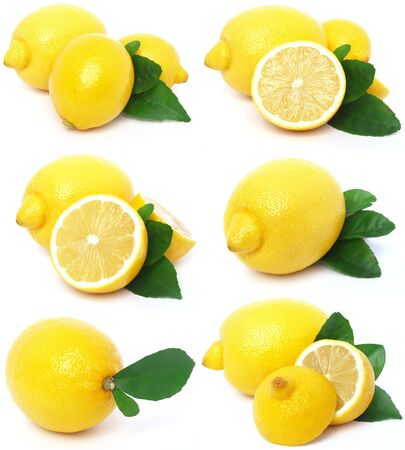 lemon collection photo