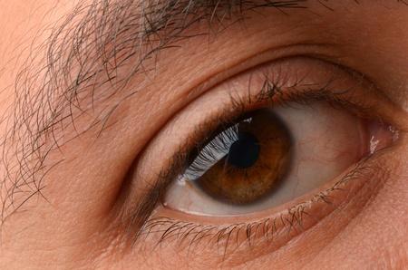 Close-up of eye Stock Photo - 13394212