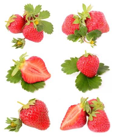 흰색 배경에 딸기