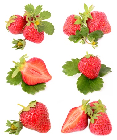 strawberries on a white background photo