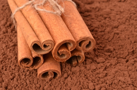 Cinnamon on the background of cocoa Stock Photo - 13846089