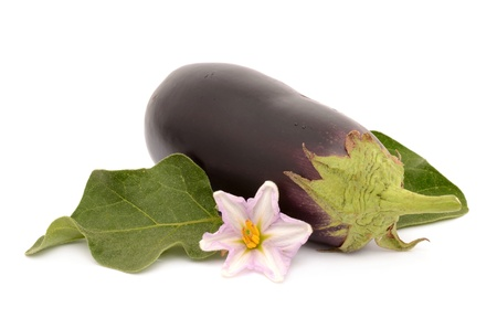 Aubergine on a white background photo