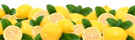 레몬 스톡 사진