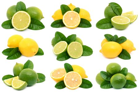 lemons and limes photo