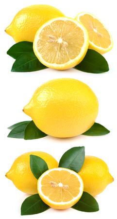 Collection citroenen