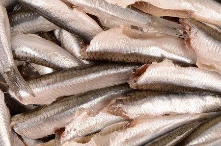 crowd tail: Fresh anchovies closeup Stock Photo