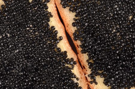 caviar: Black Caviar