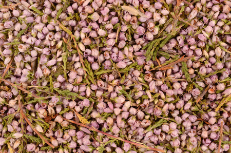 nontraditional: heather flowers
