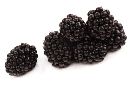 blackberries on a white background