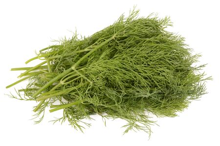 potherb: dill on a white background
